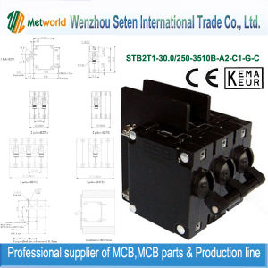 Wholesale Distributors Electrical Circuit Breaker (STB2T1-30.0) pictures & photos