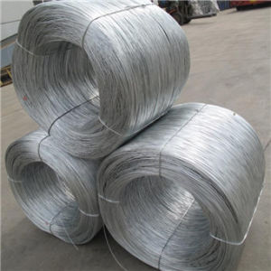 Hot Sale Galvanized Iron Wire pictures & photos