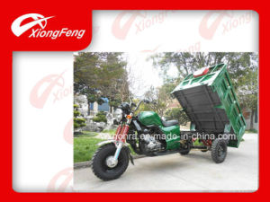 China Factory Cargo Tricycles, Strong Three Wheel Tricycle, Tricycle for African Market pictures & photos