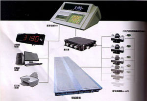 Weighing Capacity Digital Electronic Truck Scale Weighing Load Series pictures & photos