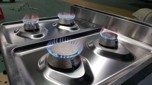 Hot Sale 6-Burner Gas Range with Gas Oven for Catering Equipments (HGR-96G) pictures & photos