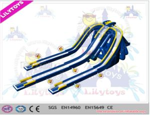 Super Big! Giant Inflatable Hippo Slide Adult Beach Inflatable Park Slide for Beach (V-HP-054) pictures & photos