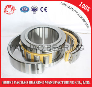 Cylindrical Roller Bearing (N221 Nj221 NF221 Nup221 Nu221) pictures & photos
