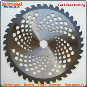 40t Sks Tungsten Carbide Tipped Saw Blade for Grass Cutting pictures & photos