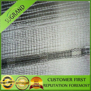 Anti Hail Netting, Anti Hail Mesh pictures & photos