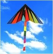 Sky Kite - Delta Kite pictures & photos