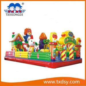 Funny Bouncy Castle, Amusement Park Inflatable Castle pictures & photos