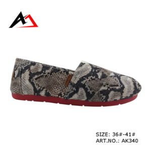 Injection Comfortable Shoes Latest Fashion Canvas for Women (AK340) pictures & photos
