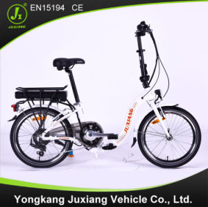 Classic Electric Folding Bike (TDN29Z) pictures & photos