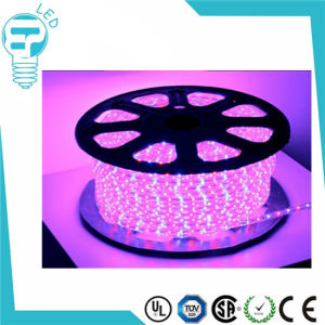 High Quality Single Color SMD 5050 LED Strip 220V 60/M LED Strip Light Warm White Flexible LED Strip pictures & photos
