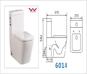 One-Piece Toilet with S-Trap&P-Trap Popular in Australia (A-6014) pictures & photos