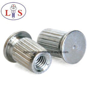 Cusomized Different Kinds of Stud Rivets High Quality pictures & photos