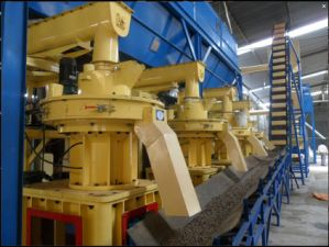 High Output Vertical Ring Die Biomass Pellet Production Line pictures & photos