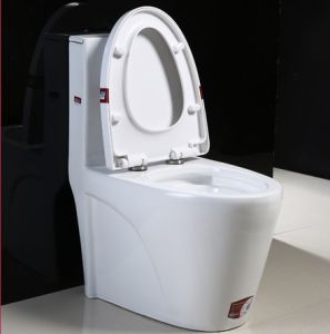 High Quality Comfortable Design Washdown/ Closetool pictures & photos