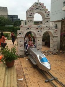 Tourist Trian Tour Train for Amusement Park for Sale Witih Cheapest Price
