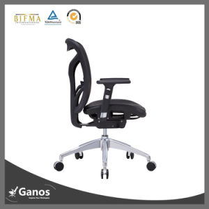 Modern Style Office Chair with Lumbar Support pictures & photos
