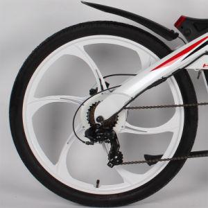 Changzhou Green Power Mag Wheel E City Bike pictures & photos