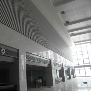 Aluminum Solid Panel Custom Made Ceiling with Fashion Design pictures & photos