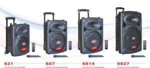 12′′ Rechargeable Trolley Outdoor Speaker with Big Power Bank for Stage 6814D pictures & photos