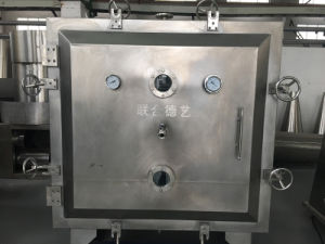 Fzg-10 Static Square Vacuum Drying Machine pictures & photos