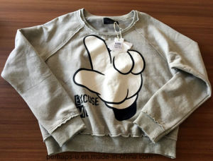 2017 New Design Thick Pure Color Hoody with Logo pictures & photos