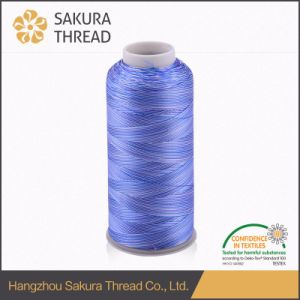 120d/2 Multicolour Embroidery Thread Rayon Viscose Filament Yarn pictures & photos