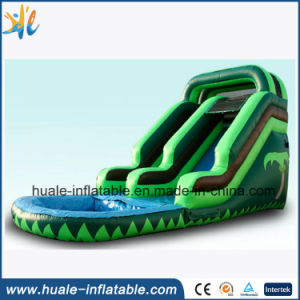 Inflatable Water Park Toys, Inflatable Water Slide with Pool pictures & photos