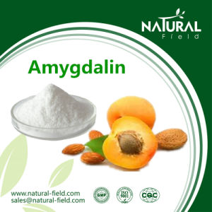 Anti-Cancer Bitter Apricot Kernel Extract Laetrile/Vitamin B17 Amygdalin Powder pictures & photos