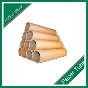 Shanghai Color Printing Kraft Paper Tube pictures & photos