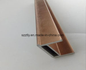 Customized Al-6063 T5 Colored Aluminum Anozided Extrusion Profile pictures & photos