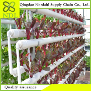 High Quality Hot Selling Agricultural Hydroponics System pictures & photos