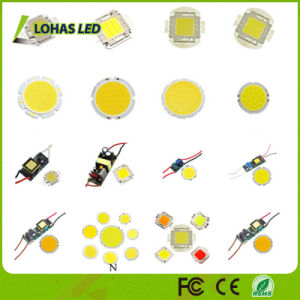LED Lighting 12-36V High Power 10W-100W SMD COB LED Chip pictures & photos