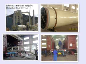 Wood Chips Dryer pictures & photos