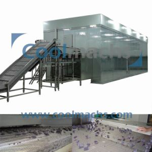 High Quality Fluidized Quick Freezing Equipment for Berries Vegetable Fruit pictures & photos