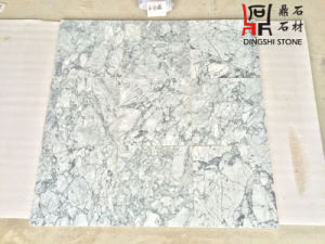 Building Material Chinese Origin Stone New Grey Marble Floor Tiles pictures & photos