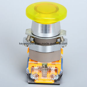 Illuminated Mushroom Push Button Switch (LA118A series) pictures & photos