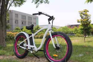 City Cruiser 48V13ah All Terrain 4.0 Inch Wide Fat Tire 500W Beach Cruiser Electric Bike pictures & photos