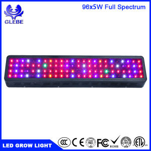 Glebe LED Grow Light Plant Grow Light Hanging Light Red Blue Plant Light pictures & photos