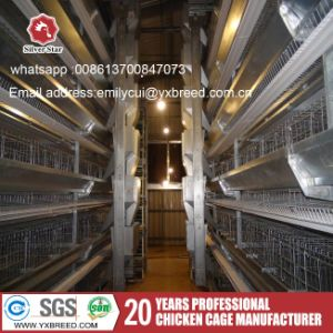Layer Chicken Cage Type a with Poultry Farming Equipment pictures & photos