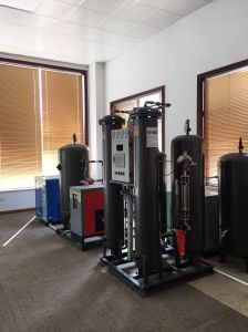Compact Skid Psa Nitrogen Generator Easy Install pictures & photos