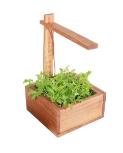 Wooden Garden Pot Flower Box Plant pictures & photos