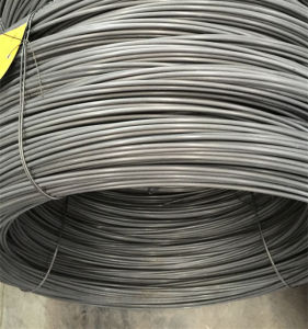 Chq Steel Wire Swch22A for Making Screws pictures & photos