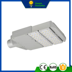 60W High Quality LED Street Garden Light pictures & photos