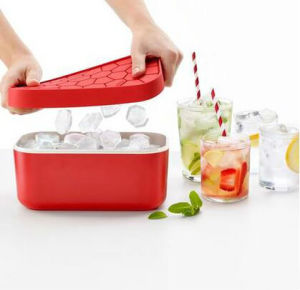 The Plastic Ice Cube Box Cooler Ice Container Cold Insulation Box pictures & photos