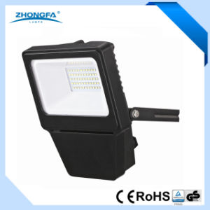 2400lm 30W LED Outdoor Light with Ce RoHS EMC Certificates pictures & photos