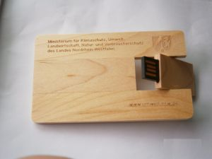 Pendrive Business Credit Card Gadget 16GB USB Flash Drive pictures & photos