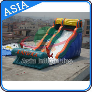 Sunshine Dolphins Playground Inflatable Water Slide pictures & photos
