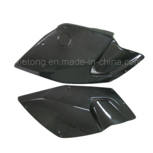 Side Panels in for BMW K1300S