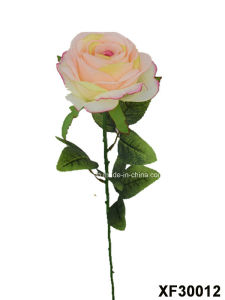 Artificial/Plastic/Silk Flower Single Stem of Rose (XF30012) pictures & photos