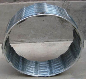 Galvanized Concertina Razor Barbed Wire Per Roll pictures & photos